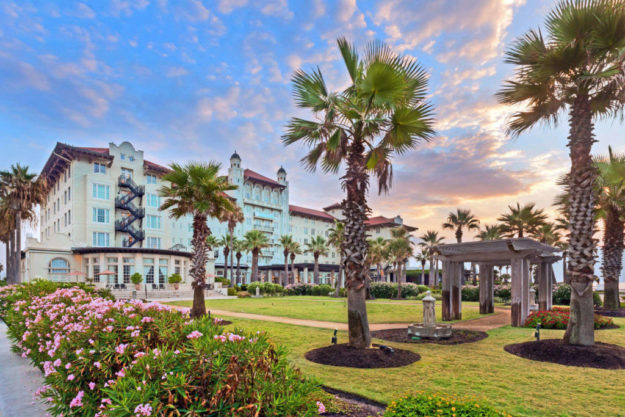 Palm trees at The Hotel Galvez, Galveston, TX